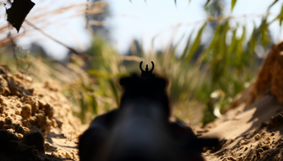 Окупанти 11 разів порушили тишу: Красногорівку і Піщане обстріляли з мінометів