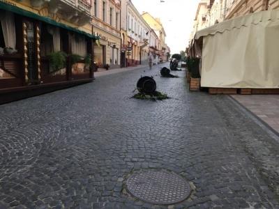 За 19 термочаш - 8 тисяч гривень: покарали хлопця, який перевернув вазони на вулиці Кобилянської