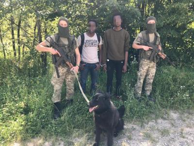 На Буковині за сотню метрів від кордону виявили сховок із сигаретами і 4 порушників