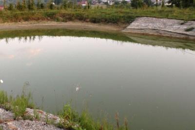 Пішов рибалити: у ставку на Буковині втопився 48-річний чоловік