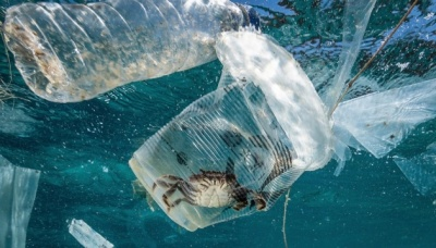 За рік у Середземне море викидають 570 тисяч тонн пластику