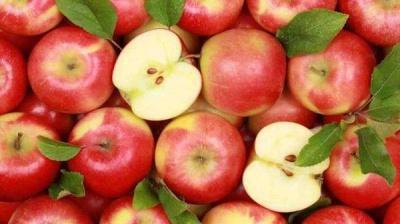 Українським яблукам хочуть відкрити ринок В'єтнаму