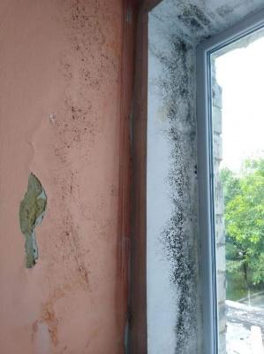 Стіни у цвілі і пошкоджені меблі: у школі в Чернівцях затопило класи - фото