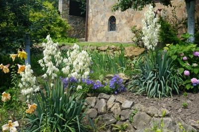 На дачі Лідії Ротару – море квітів і трав: вдома у співачки