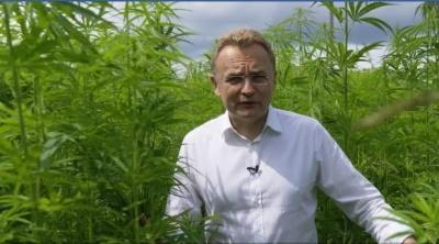 """""""Багато політиків вживають…"""": Садовий записав ролик на тлі плантації коноплі"""