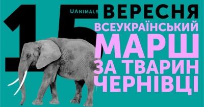 У Чернівцях пройде всеукраїнський марш за права тварин