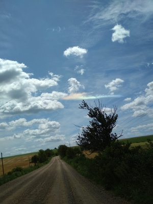 Вогняну веселку зафіксували у небі над Буковиною – фото