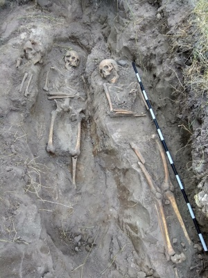 На Житомирщині розкопали масове поховання українців, котрих вбила радянська влада