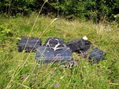 Стрілянина на кордоні: на Буковині контрабандисти втекли і покинули 8 тисяч пачок цигарок