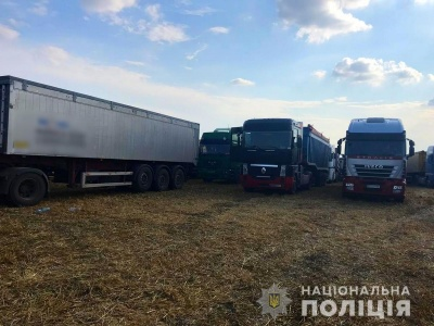 У двох селах на Буковині незаконно збирали урожай пшениці - власники не поділили поля