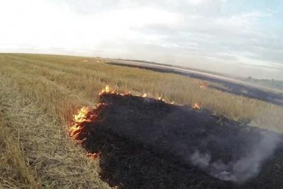 Масштабна пожежа на Буковині: на полі горіли 4 гектари стерні