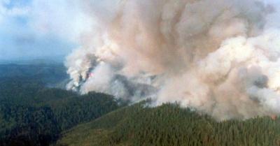 Лісові пожежі в Росії: дим досяг території США і Канади