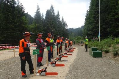 На Буковині провели змагання вальників лісу