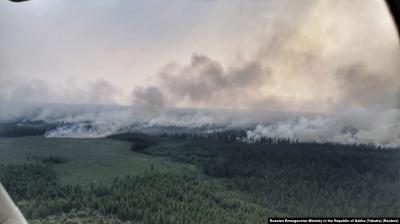 У Росії порахували збитки від лісових пожеж