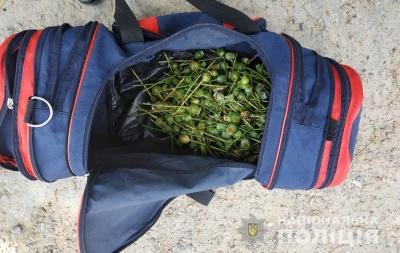 На Буковині у чоловіка вилучили близько 600 рослин опійного маку