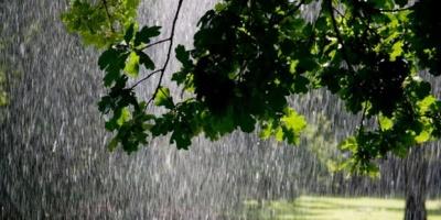 Завтра синоптики обіцяють дощі та зливи у західних областях