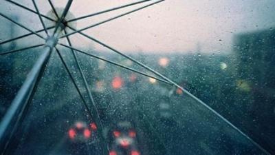 Погода у Чернівцях 8 серпня