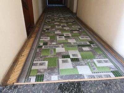 На Житомирщині до приїзду Зеленського підлогу РДА встелили зеленим килимом