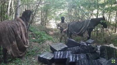 На Буковині біля кордону затримали кінний караван із сигаретами на пів мільйона - відео