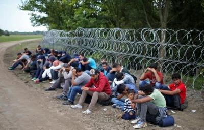 Словенія зводить на кордоні нові паркани, щоб завадити припливу мігрантів