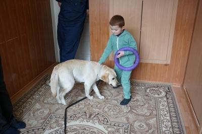 У Чернівцях на тренінгу розкажуть, як собаки можуть лікувати людей