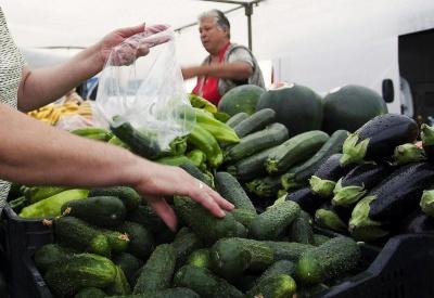 Огірки за тиждень подорожчали майже на третину - експерти