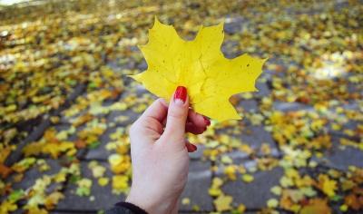 Скільки днів відпочиватимуть українці восени