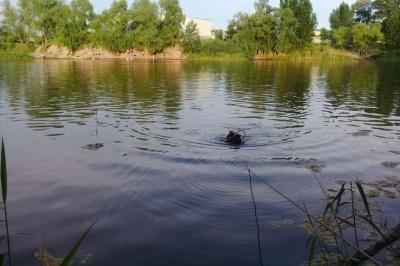 На Буковині у ставку втопився чоловік