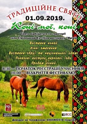 На Буковині відбудеться фестиваль коней