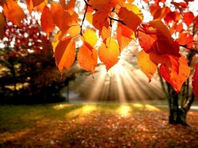 Осінь розпочнеться зі спеки