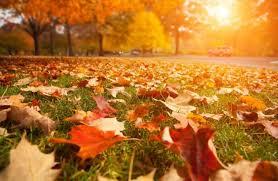 ТОП подій 6 вересня: яким буде день