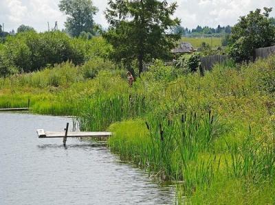 На Буковині вже дві доби розшукують чоловіка, який зник біля ставка