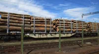Укрзалізниця хоче закрити станцію в селі на Буковині: лісгосп може залишитись без прибутків