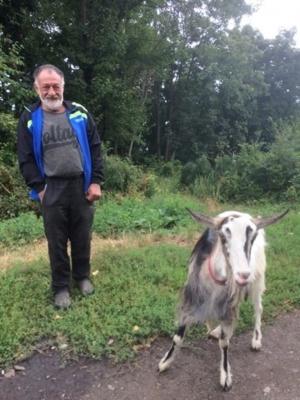 «Усі знають Козю!»: чернівчанин у центрі міста тримає козу – фото