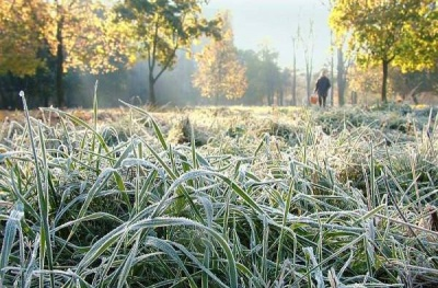 Заморозки до -4: від завтра на Буковині очікується різке похолодання