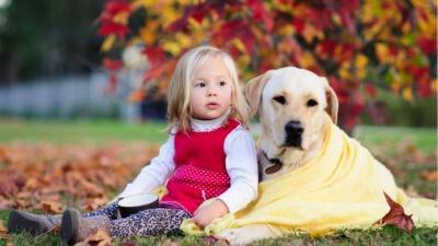 Чернівчан запрошують на артпікнік і терапію з собаками