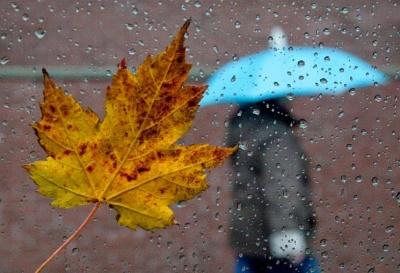 Анекдот дня: про осінню погоду