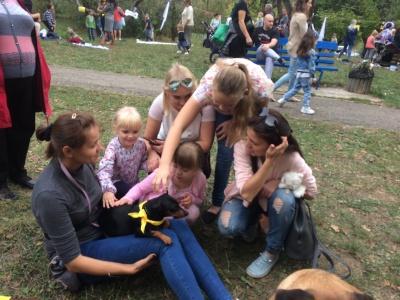 У Чернівцях влаштували «йогу з собаками» - фото