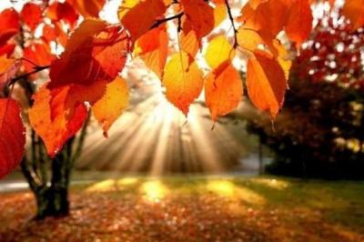 У жовтні ще буде «бабине літо»