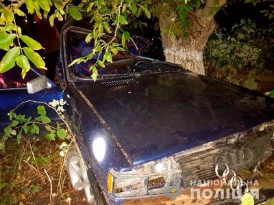 На Буковині «Audi» врізалось у дерево: подружжя з маленькою донькою в лікарні