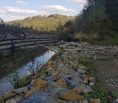 На рибзаводі на Буковині може загинути риба: невідомий перекрив русло річки