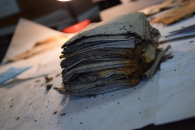 Недосліджені архіви УПА передали до Центру досліджень визвольного руху
