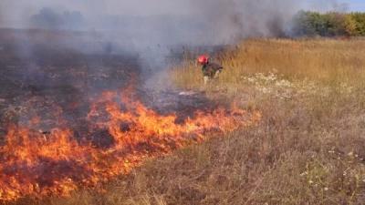Залишили багаття без нагляду: на Буковині згоріло 5 гектарів сухої трави
