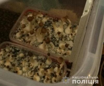 Виготовляли амфетамін та вирощували психоактивні гриби: на Буковині викрили нарколабораторії