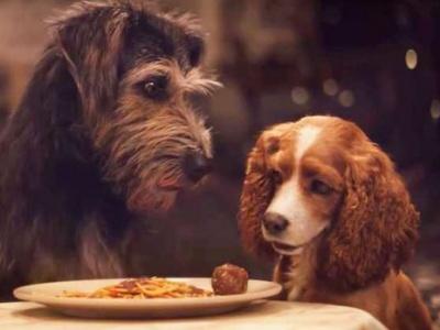 «Леді та Блудько» від Disney: мережу підриває новий зворушливий трейлер - відео