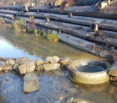 На Буковине неизвестные снова отвели русло реки у форелевого завода: рыбе грозит гибель