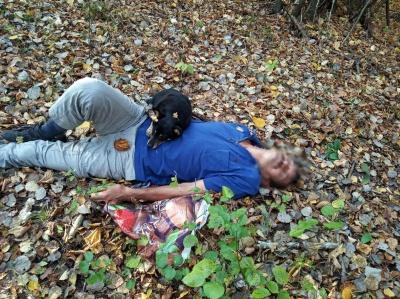 Гучно гавкав і бігав навколо господаря: на Закарпатті собака врятував життя чоловіку