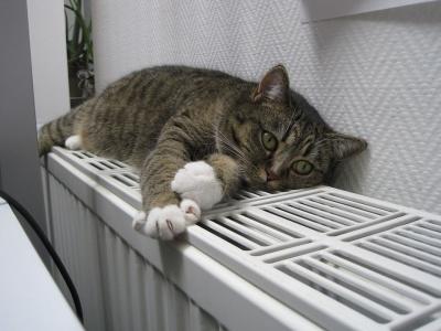 Опалювальний сезон у Чернівцях: тепла у квартирах сьогодні ще не буде