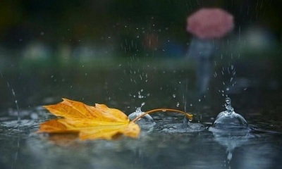 Штормове попередження: у Карпатах очікуються сильні дощі
