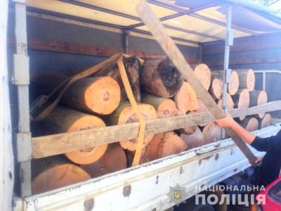 Буковинця, який незаконно перевозив деревину, можуть засудити до трьох років ув'язнення